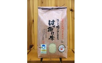 【29年産】どこまでお米を美味しく作る事が出来るのか『はざ掛け米』5kg