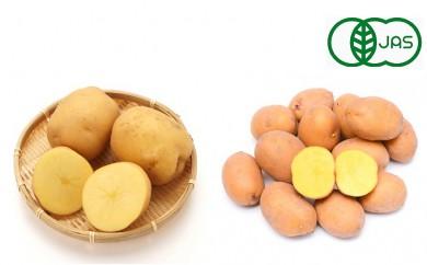 [№5749-0254]小笠原農園 有機栽培じゃがいも10kg(とうや・インカのめざめ)