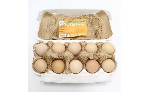 Sv-02 放し飼い土佐ジローの卵(高知のブランド卵)20個