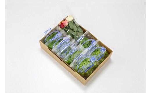 【5-02】 植物工場産野菜・御徳用A-6セット(6ヶ月契約)1セット×6回