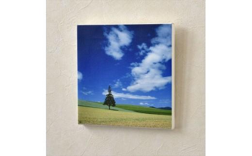 [020-20]写真家 阿部俊一 キャンバスプリント「夏の丘模様」