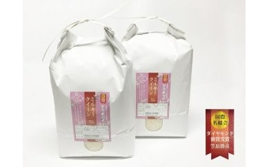 南魚沼産笠原農園米 ミルキークイーン 10kg