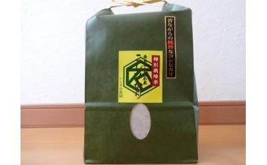 【昔ながらの純粋なコシヒカリ】特別栽培米4.5kg×2入