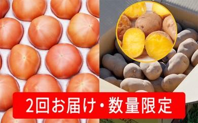 [№5724-0202]≪お得!2回お届け≫こだわりフルーツトマト(20玉以上)と幻のじゃがいもインカのめざめ約7kg