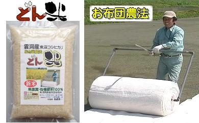 特選 雲洞産魚沼コシヒカリ「どん米」 精米3升(4.5㎏)