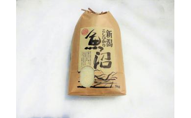 農薬:栽培期間中不使用栽培( 8年)クリーン白米 白米5kg