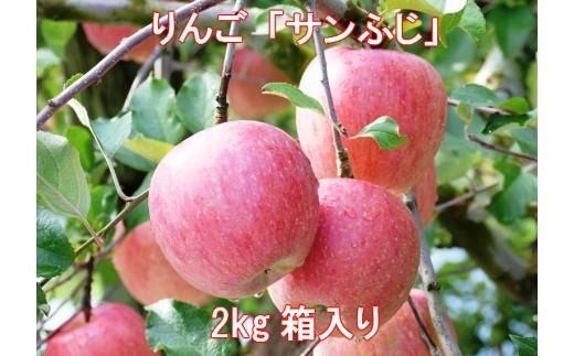 A-317 30年_りんご「サンふじ」2kg