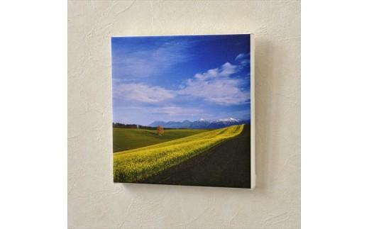 [020-18]写真家 阿部俊一 キャンバスプリント「初冠雪とキガラシ」