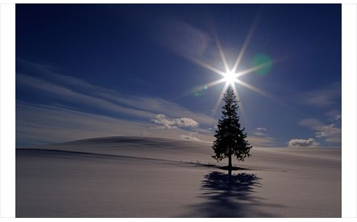 [100-35]写真家 阿部俊一 額付き写真「冬景色の光」