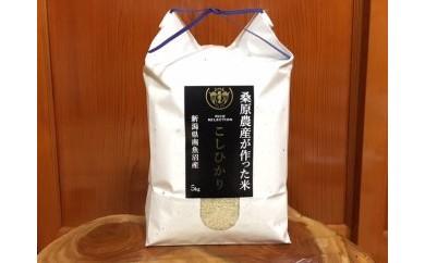29年産「南魚沼産コシヒカリ」桑原農産のお米 5㎏