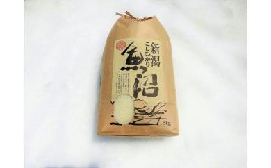 農薬:栽培期間中不使用栽培 ( 8年)糖質制限対応 3分搗き米 5kg
