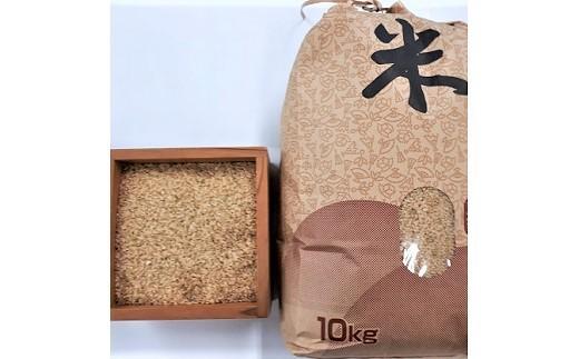 0056-110 はえぬき(玄米)10kg