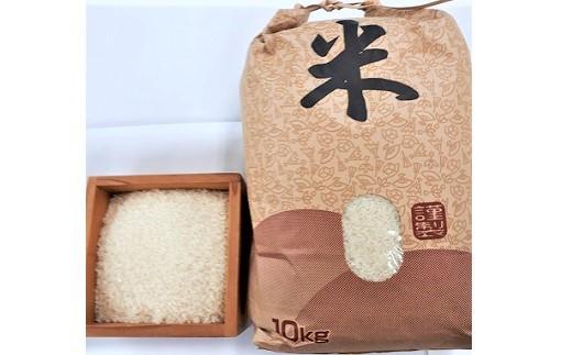 0056-109 はえぬき(精米)10kg