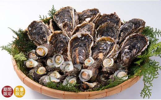 【B33】岩牡蠣とサザエ