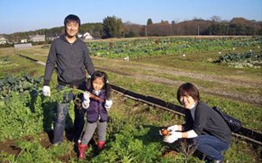 C)「カズサ愛彩ガーデンファーム」 お試し収穫体験(土日限定)