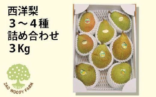 0062-120 西洋梨 3~4種詰合せ3kg 家庭用