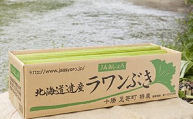 [№5642-0213]北海道あしょろ町特産「生ラワンぶき5kg」※クレジット決済限定