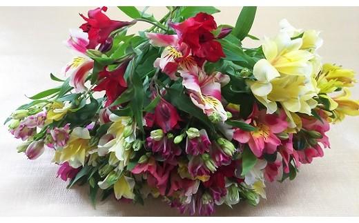 118 アルストロメリアの花束(お手頃セット)