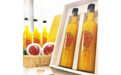 宮古島のしあわせマンゴー 大瓶2本セット