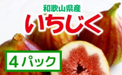 [№5745-0940]≪和歌山県産≫いちじく たっぷり4パック【紀州グルメ市場】