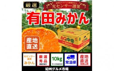 [№5745-0973]【秀選品】有田みかん 光センサー選果 10kg(S~L)