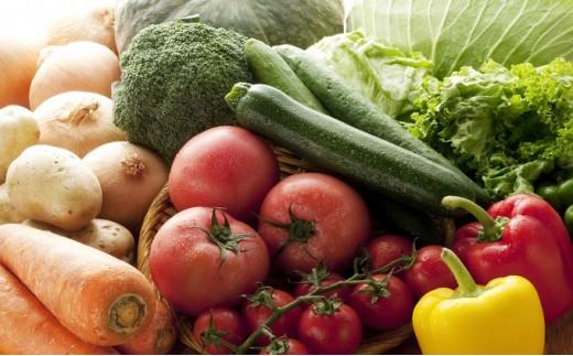 [№5730-0232]【6ヶ月お届け】季節の野菜ふるさと便