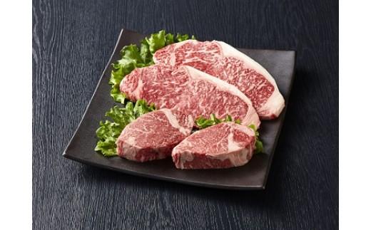 A112 九州産 黒毛和牛(4~5等級)ステーキ食べ比べセット