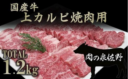 B646 国産牛上カルビ焼肉用1.2㎏