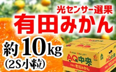 [№5745-0912]【秀選品】有田みかん 光センサー選果 10kg(小粒2S)
