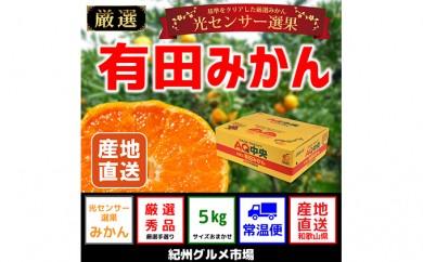 [№5745-0974]【秀選品】有田みかん 光センサー選果 5kg(S~L)