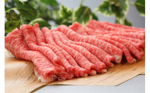 E-3【肉質日本一!】鳥取和牛プレミアムセット