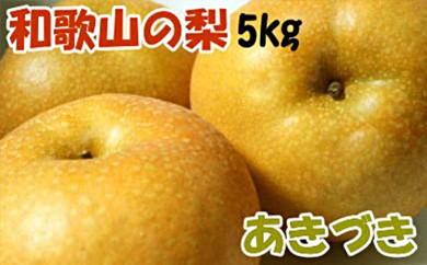 [№5745-0944]【限定】和歌山県産の梨(品種:あきづき)約5kg・秀選品