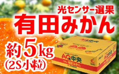 [№5745-0911]【秀選品】有田みかん 光センサー選果 5kg(小粒2S)