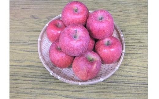 0096-104 りんご(サンふじ)5kg 14~18玉