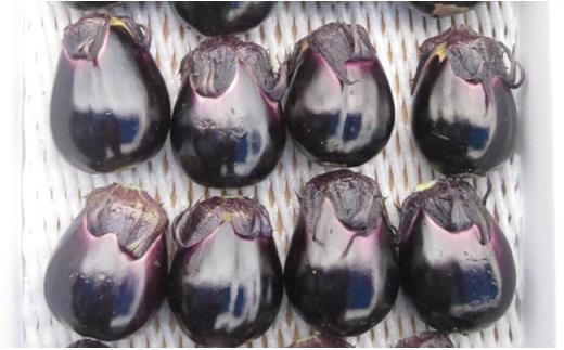 1-363 郷土の伝統野菜 梨茄子一箱(18~21個入り)