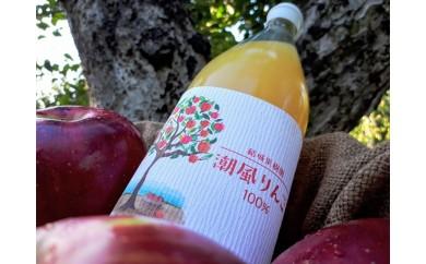 [№5921-0076]潮風リンゴジュース 1L×6本 【結城果樹園】