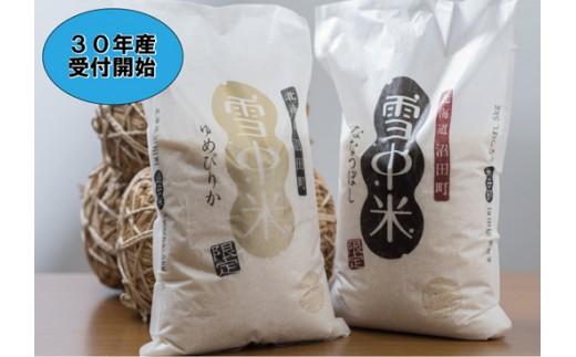【10-49】先行予約! 雪中米食べ比べセット10㎏【ななつぼし5㎏・ゆめぴりか5㎏】30年産