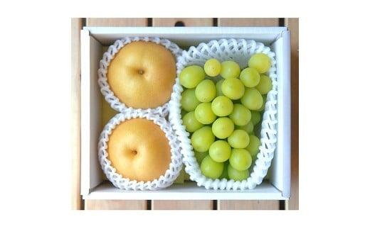 B07 季節の梨とシャインマスカット