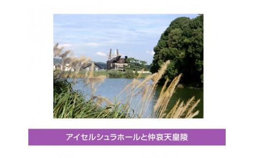 B-34 ガイドと巡るウォーク「藤井寺歴史探訪コース」