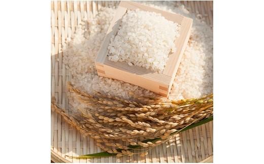 B09 晴れの国 お米食べくらべ 15kg