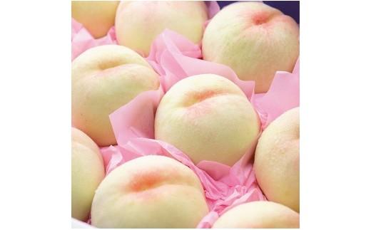 B01 お徳用 白桃 4kg