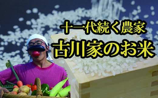 HMG300 十一代続く農家 古川家のお米/白米5kg×3ヶ月(平成29年度産米)