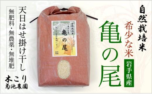 【数量限定】木こりの菊池農園 自然栽培米30年度産【亀の尾】(白米・玄米) 10㎏