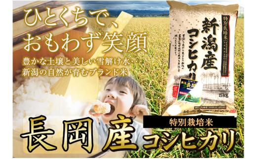 1-388 新潟県産長岡特栽コシヒカリ(5kg×1)