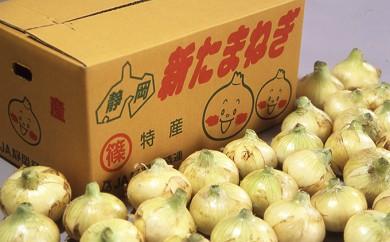 [№5786-1977]新玉葱 Lサイズ 約10kg
