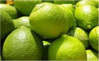 [№5745-0959]【国産】紀州和歌山 有田レモン 3kg