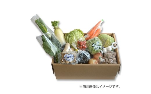A10 岡山県産おいしい野菜 16種