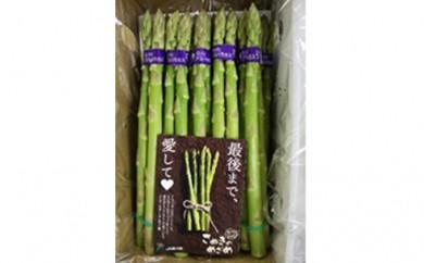 [№5911-0081]香川県オリジナルアスパラガス「さぬきのめざめ」春芽 約1.5kg