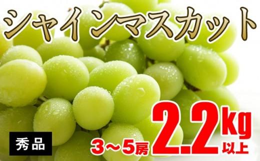 B301 【秀品】シャインマスカット2.2kg