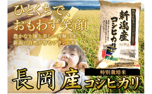 【H30年産】新潟県産長岡特栽コシヒカリ10kg(5kg×2袋)